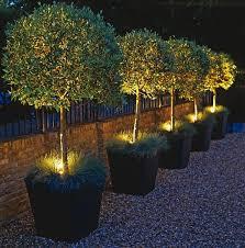 Designer Garden Lights Simple Decoration