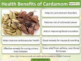 cardamom tincture uses