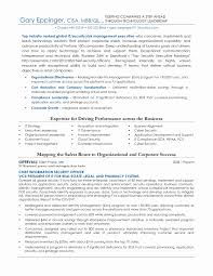 Security Officer Resume Sample Objective Best Of Best Example