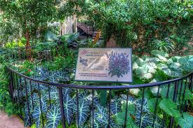 the cecil b day erfly center encourages visitors to build erfly gardens
