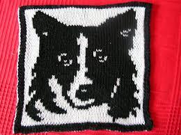 Border Collie Knitting Chart Ravelry Border Collie Pattern By Tanja Straeten