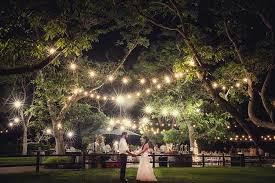 1awesome lighting for a garden wedding