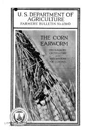 The corn earworm : its ravages on field corn and suggestions for ...