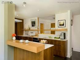 Kitchen Apartment Modern Small Kitchen Ideas Apartment Design Vagrant