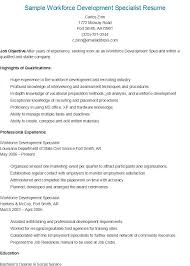 Passport Specialist Sample Resume Beauteous Sample Workforce Development Specialist Resume Resame Pinterest