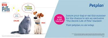 Pets best offers dog insurance plans that cover accidents, illness and more. Petplan The Secret Life Of Pets Brand Culture London