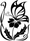 Схема бабочек в рисунке