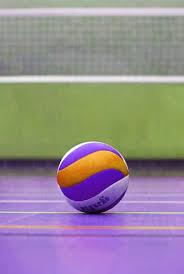 purple volleyball wallpaper