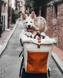 27 Best <b>Backpacks</b> for Travel in <b>2019</b> [Categorized]
