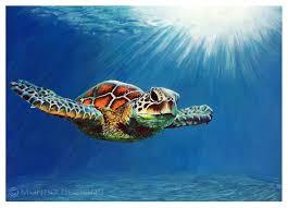 turtle acrylic animal painting 2016