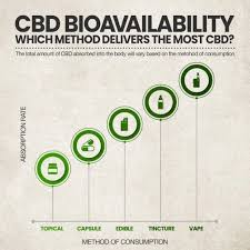 Cbd Chart How Much Cbd Oil Should I Take A Beginners Guide To Cbd