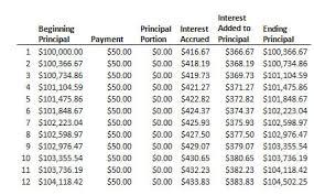 Negative Amortizing Loan Definition Example Investinganswers