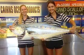 huge queenfish fresh queenfish cairns ocean s australian seafood