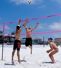 Park And Sun Sports Beach Volleyball Court Sand Auger