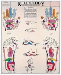 Reflexology For Babies Chart Reflexology Chart