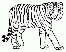 Small Picture Printable Tiger Coloring Pages 197 Free Coloring Pages Of Cute