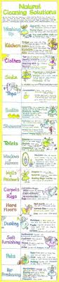 Natural Cleaning Solutions Chart Liz Cook Charts