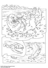 Kleurplaat Otter Afb 3073 Images