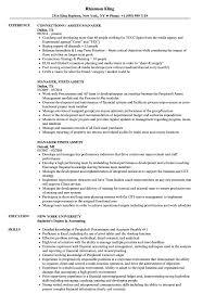 Manager Assets Resume Samples Velvet Jobs