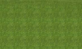 Free photo Grass texture rough rural seamless Non Commercial
