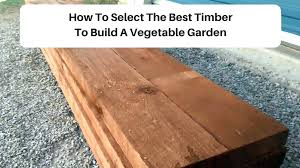 pressure treated wood garden beds lumber for luxury raised good lifetime bed f