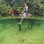 imagem de Cachoeira Grande Maranhão n-8