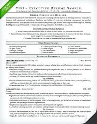 Technology Resume Sample Template Word Free Example Ceo Doc