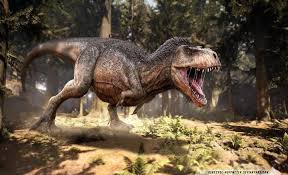 Image result for t rex vs siats