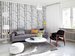 home decor sensational ideas what color rug goes with a grey couch rugs with grey