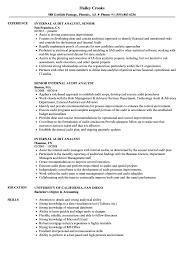 Internal Audit Analyst Resume Samples Velvet Jobs