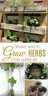 there are many benefits to growing herbs in containers when they re portable