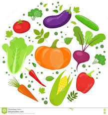 Vegetable Round Template Stock Vector Illustration Of Menu
