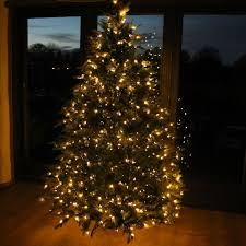Office Christmas Tree Hire
