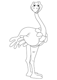 Small Picture Somali ostrich coloring page Download Free Somali ostrich