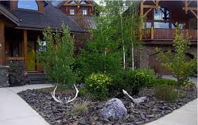 Small Picture Ideas For Front Yard Landscaping Without Grass front yard