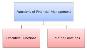 Executive And Routine Functions Of Financial Management