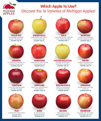 Apple Variety Chart Which Apple To Use Discover The 16 Varieties Of Michigan