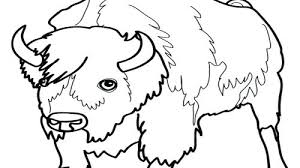 Jaguar Coloring Pages Baby Jaguar Coloring Page Baby Jaguar Coloring