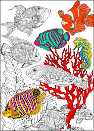 colored fish printables. Interesting Fish Image 1 Inside Colored Fish Printables
