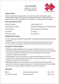 One Page CV Template Only Suitable To Job Seekers Who Have Been