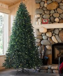 National Tree Company 12 Ft PreLit Dunhill Fir Hinged Artificial 12 Ft Fake Christmas Tree