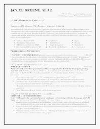 Resume Templates Microsoft Word 2013 Enchanting Modern Resume Template Free Download Best Of Resume Template Ms Word