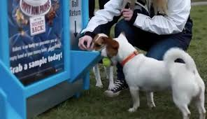 Dog Park Vending Machines