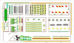 vegetable garden plan for a beginner layout beginners the modern