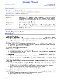 Statistical Programmer Sample Resume Mesmerizing Pin By Ririn Nazza On FREE RESUME SAMPLE Pinterest Resume