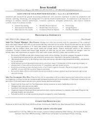 Resume Templates Real Estateuntant Examples Junior Pdf Assistant