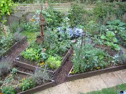 Small Picture 191 best VEGETABLE GARDEN images on Pinterest Gardening Veggie