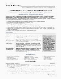 Teacher Curriculum Vitae Impressive Sample Resume For Ntt Teacher Resume And Cv Examples Resume Example