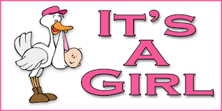 Its A Girl Banner Dream Scenes