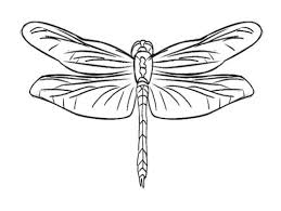 Small Picture 74 best Printables images on Pinterest Dragonfly art